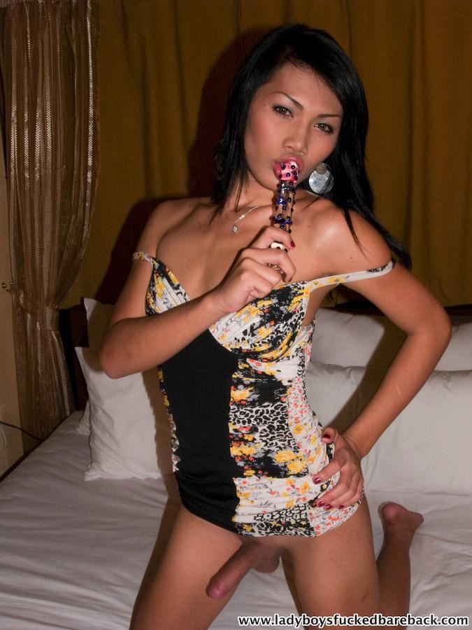 Dildo for a ladyboy